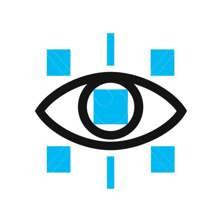 1. Vision